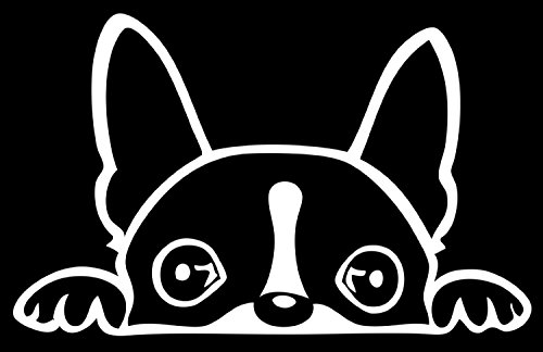 "Boston Terrier Peeking Over 6"" White Vinyl Car Truck Decal Sticker Dogs Rescue Adopt Animals Cute Funny Adorable"