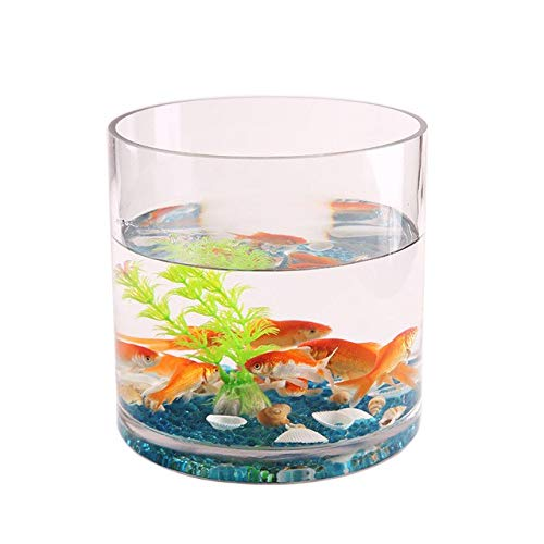 Creative Thickening Straight Glass Fish Tank Cylindrical Living Room Office goldfish Tank Transparent Turtle Tank Hyonics   Fish tank, 20x20x50cm