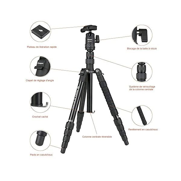 RetinaPix Fotopro X-GO Gecko 5ft Aluminium Built in 2-in-1 Tripod + Monopod Stand with Ball Head for DSLR Camera Payload 8 kg (Black)