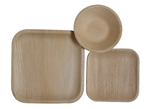 Table To Go 75-Piece Palm Leaf Square Dinnerware Set (Palm Tree Dinnerware Sets)
