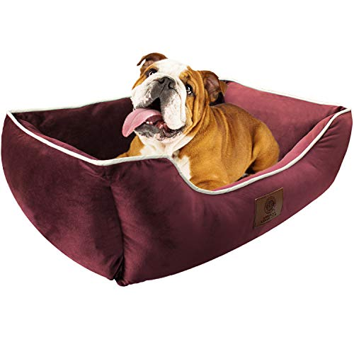 AKC Deluxe Small Dog Bed, Pet Cuddler with High Bolster Walls