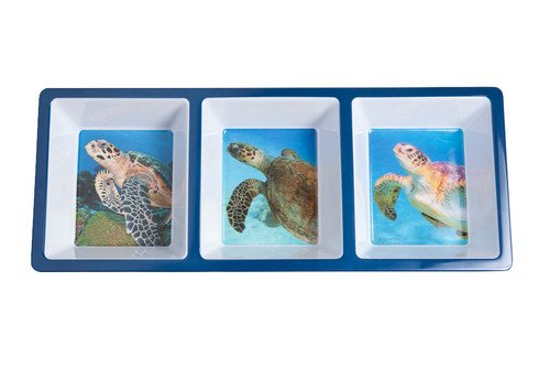 (Galleyware Sea Turtle Divided Appetizer Tray)