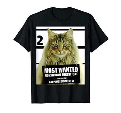 Most Wanted Norwegian Forest Cat T-shirt - Feline Tee Shirts