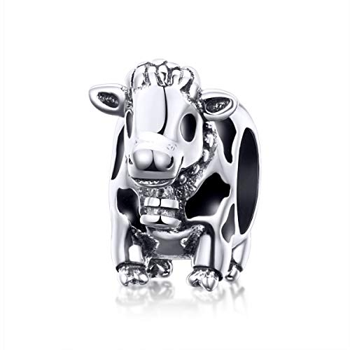 Buy authentic 925 silver charms