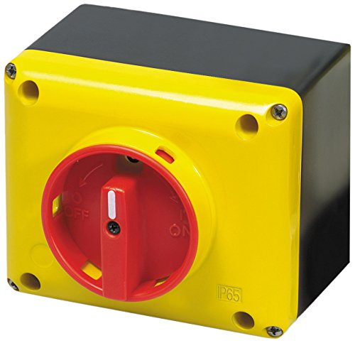 (ASI SQ032003BC10 Enclosed Rotary Disconnect Switch, Yellow/Red)