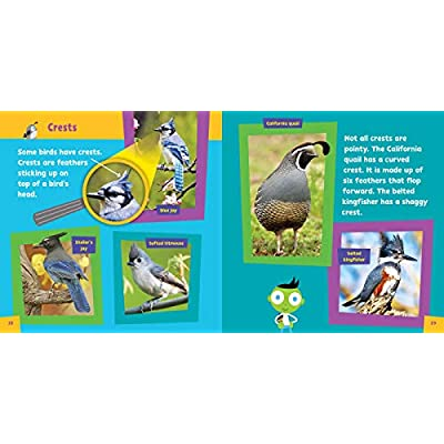 PBS KIDS Look and Learn Birds: PBS KIDS, Parvis, Sarah: Toys & Games