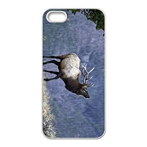 The Deer Hight Quality Plastic Case for Iphone 5s