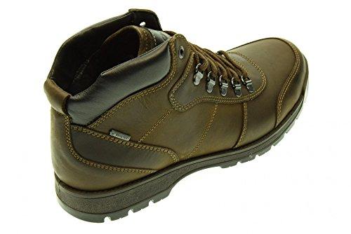 IGI & CO Mann Boot 47511/00 Caffè