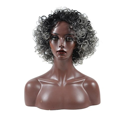 Kinky Curly Hair Wigs for Black Women Fluffy Wavy Synthetic Wig Natural Looking Heat Resistant Wigs Half Hand Tied Willsa (White Fiber Optic Costumes Wig)