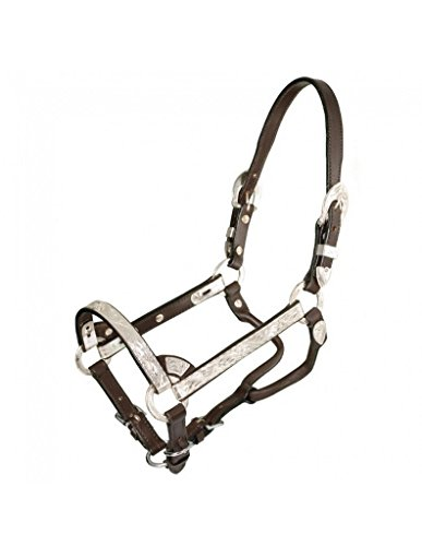 Royal King Dark Oil Silver Show Halter - Edge Show Halter