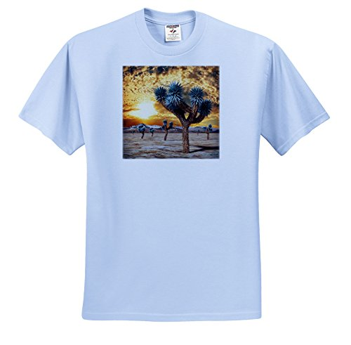 Price comparison product image Boehm Graphics National Park - Joshua Tree Sunset - T-Shirts - Youth Light-Blue-T-Shirt Small(6-8) (ts_253998_60)