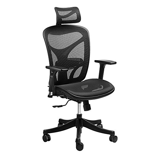 h Mesh Office Adjustable Headrest, 3D Flip-up Arms, Back Lumbar Support Computer Desk Task Executive Chair, Black, 601 ()