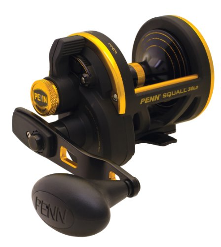 Penn Squall Lever Drag Conventional Baitcast Reel (30-Pound/360-Yard), Outdoor Stuffs