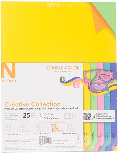 Neenah Paper Creative Collection Cardstock, Multi-Colour, 21.33 x 27.68 x 0.76 cm