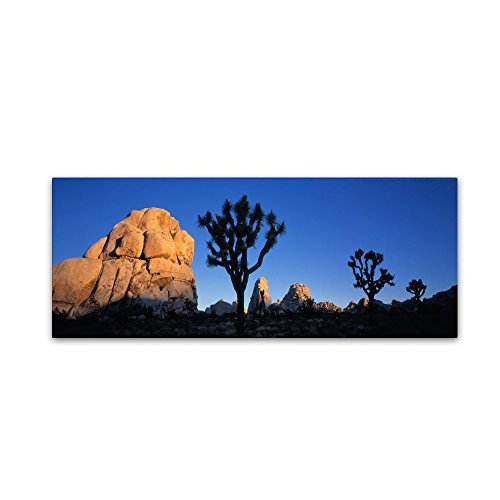 "picture of Trademark Fine Art ""First Light-Joshua Tree NP"" Artwork by David Evans, 8 by 24-Inch"