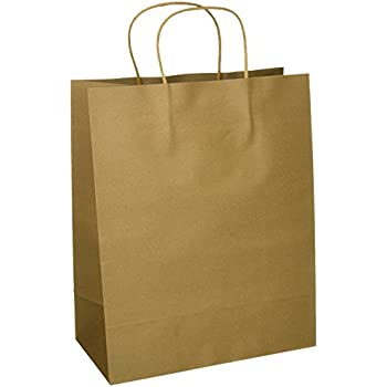 Craft gift bags brown paper 1 dozen 10 x for Brown paper craft bags