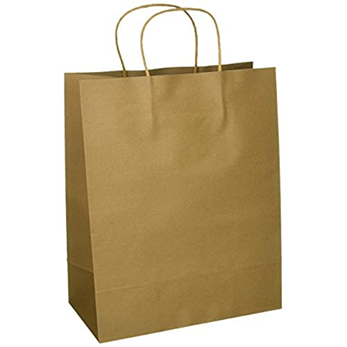 Paper Bags With Handles Amazon Com