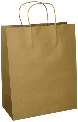 Craft Gift Bags ~ Brown Paper 1 dozen – 10″ x 5″ x 13″