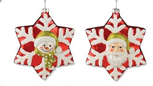Bethany Lowe Frosted Glass Snowflake Ornament DA3315
