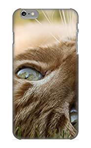 Appearance Snap-on Case Designed For Iphone 6 Plus- Animal Cat(best Gifts For Lovers)