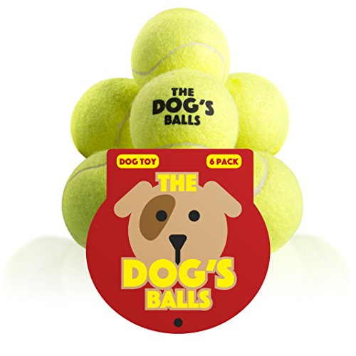 [The Dog's Balls, 6 Premium Dog Tennis Balls, Ball for Puppy Training, Play, Exercise & Fetch, Fits Chuckit Launchers, Bouncy Dog Tennis Balls Thicker than Regular Balls, the King Kong of Dog's] (Adult Floating Ghost Halloween Costumes)