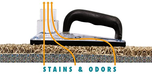 S.O.S. Sub Surface Pet Clean Up Tool Kit w/ Pet Force Stain & Odor Remover by UltraClean Supply (Image #2)