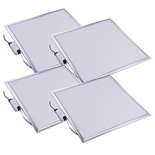DELight 2x2 Ft 48W LED Flat Panel Light, 6000K, Silver Frame, Ultra Thin Edge-lit LED Troffer Office Lighting, 4 (Silver Flat Panel Frame)