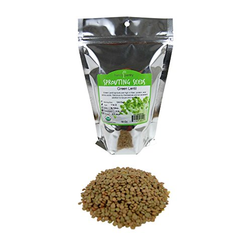 Organic Dried Green Lentil - Organic Dried Green Lentil Sprouting Seed: 1 Lb - Dry Lentils for Planting Garden Seeds, Soup, Cooking or Sprout Salad, Sprouts