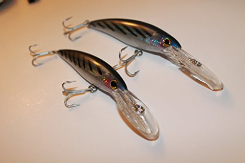 Deep Diver / Floating / Diving / Salt Water Trolling Lure Skipjack ()