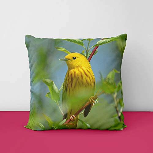 41VHFhazhAL Sparow Birds Square Design Printed Cushion Cover