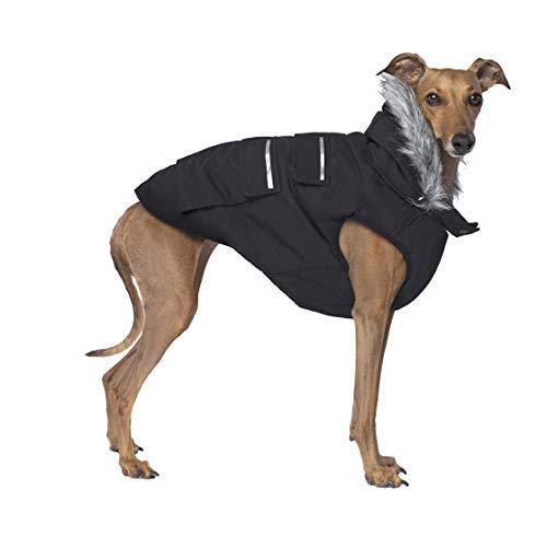 Canada Pooch Everest Explorer Dog Vest, Black, Size 18 by Canada Pooch (Image #7)