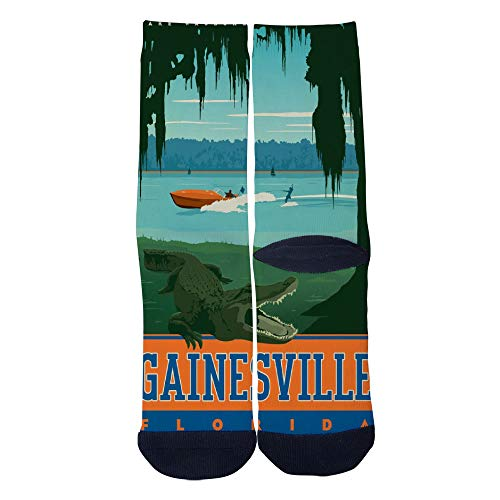 Mens Womens Casual Gainesville Florida Retro Travel Poster Socks Novelty Custom Socks Hip Hop Cartoon Socks Elite Crew Socks Black