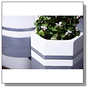 White Ceramic Flower Pot Indoor Planters for Plants ? 7