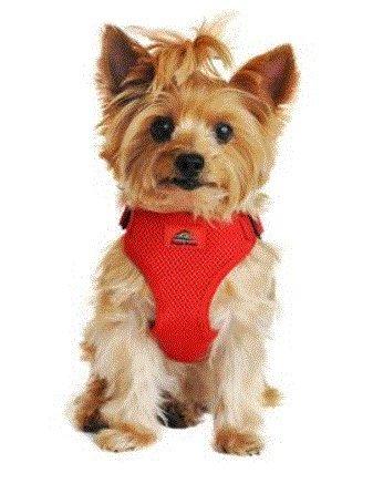 nd Snap Choke Free Dog Harness - Flame Red (S) ()