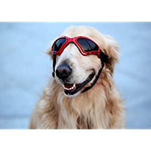 Kpmall Large Dog Goggles Sunglasses UV Protective Foldable Lenses Eye Wear Protection Fashion Eyewear Goggles-Red