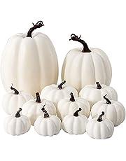 HBlife 12Pcs Assorted Sizes Artificial Pumpkins Decoration Harvest Fall Pumpkins Fake Foam Pumpkins for Fall Autumn Decor Thanksgiving Halloween Decorations (White)