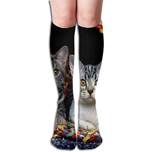 Socks Cats Basket Animal Great Womens Stocking Decoration Sock Clearance For Girls