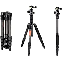 COMAN C2016 Carbon Fiber Tripod Monopod 56.7 inches Compact for Travel with 360 Degree Ball Head for Cannon Nikon Sony DSLR Camera and Video
