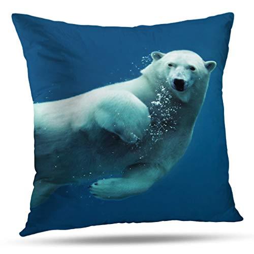 Arctic Ocean Underwater Camera - 3