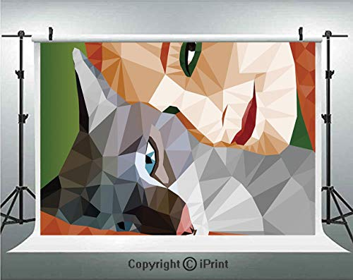 Animal Decor Photography Backdrops Geometric Mosaic Little Cute Cat and Owner Women Smiling Sleeping Couple Image,Birthday Party Background Customized Microfiber Photo Studio Props,10x6.5ft,Multicolor