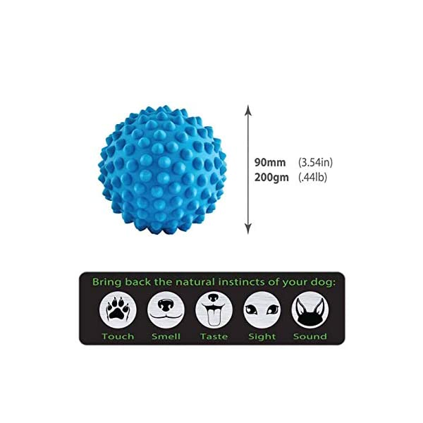 Aussie Dog Soft Catch Ball, Blue, Blue Click on image for further info. 2