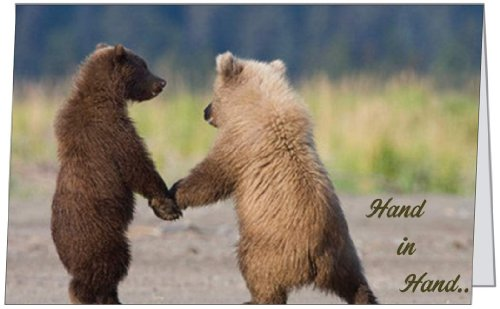 Anniversary love spouse wife husband wedding congratulations bears anniversary love spouse wife husband wedding congratulations bears greeting card 5x7 by quickiecards always free shipping q1049 buy online in uae bookmarktalkfo Images