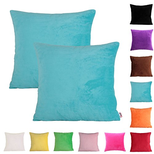 Queenie - 2 Pcs Solid Color Chenille Decorative Pillowcase Cushion Cover for Sofa Throw Pillow Case Available in 11 Colors & 6 Sizes (16 x 16 inch (40 x 40 cm), Sky Blue)