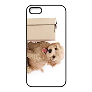 Puppy Dog Hight Quality Plastic Case for Iphone 5s