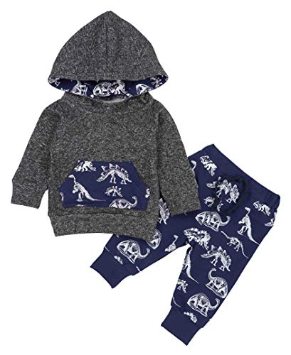 Toddler Infant Baby Boys Dinosaur Long Sleeve Hoodie Tops Sweatsuit Pants Winter Outfit Set 18-24 Months