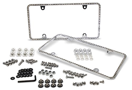 bling auto plate - 4