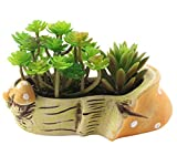 Tiny Succulent Planter Flower Pot Indoor Ceramic Mushroom for Home Office Garden Decor