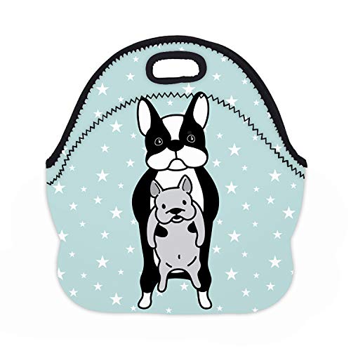 (MOSDELU Boys Girls Baby French Bulldog Lunch Bag Insulated Lunch Tote Bento Bag Lunchbox Handbags Outdoor Travel Picnic Carry Case)