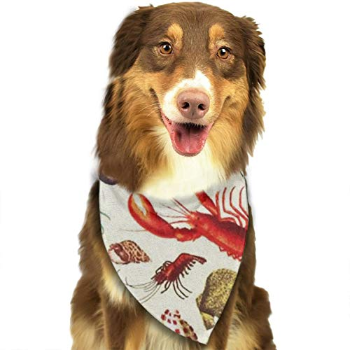 OURFASHION Lobster and Shell Bandana Triangle Bibs Scarfs Accessories for Pet Cats and Puppies.Size is About 27.6x11.8 Inches (70x30cm). ()