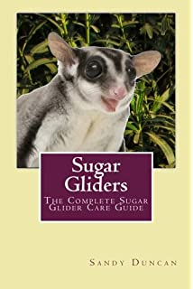 Sugar gliders the ultimate pet owners manual on all you need to sugar gliders the complete sugar glider care guide fandeluxe Choice Image